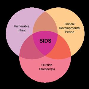 SIDS_TripleRisk